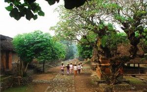 bali-desa-tengenan-traditional-village-bali-full-day-tour-bali-car-rental-cheap