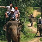 bali-elephant-ride-tour-bali-activities-tour-bali-car-rental-cheap