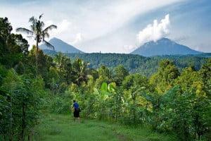 bali-munduk-village-full-day-tour-bali-car-rental-cheap