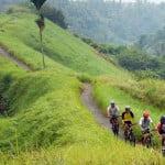 bukit-campuhan-ubud-bali-activities-tour-bali-car-rental-cheap